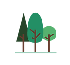 logo forest.png