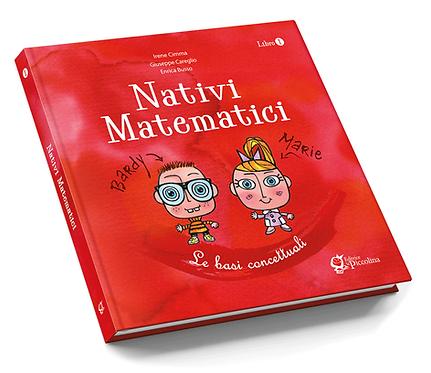 Nativi Matematici, Matematica