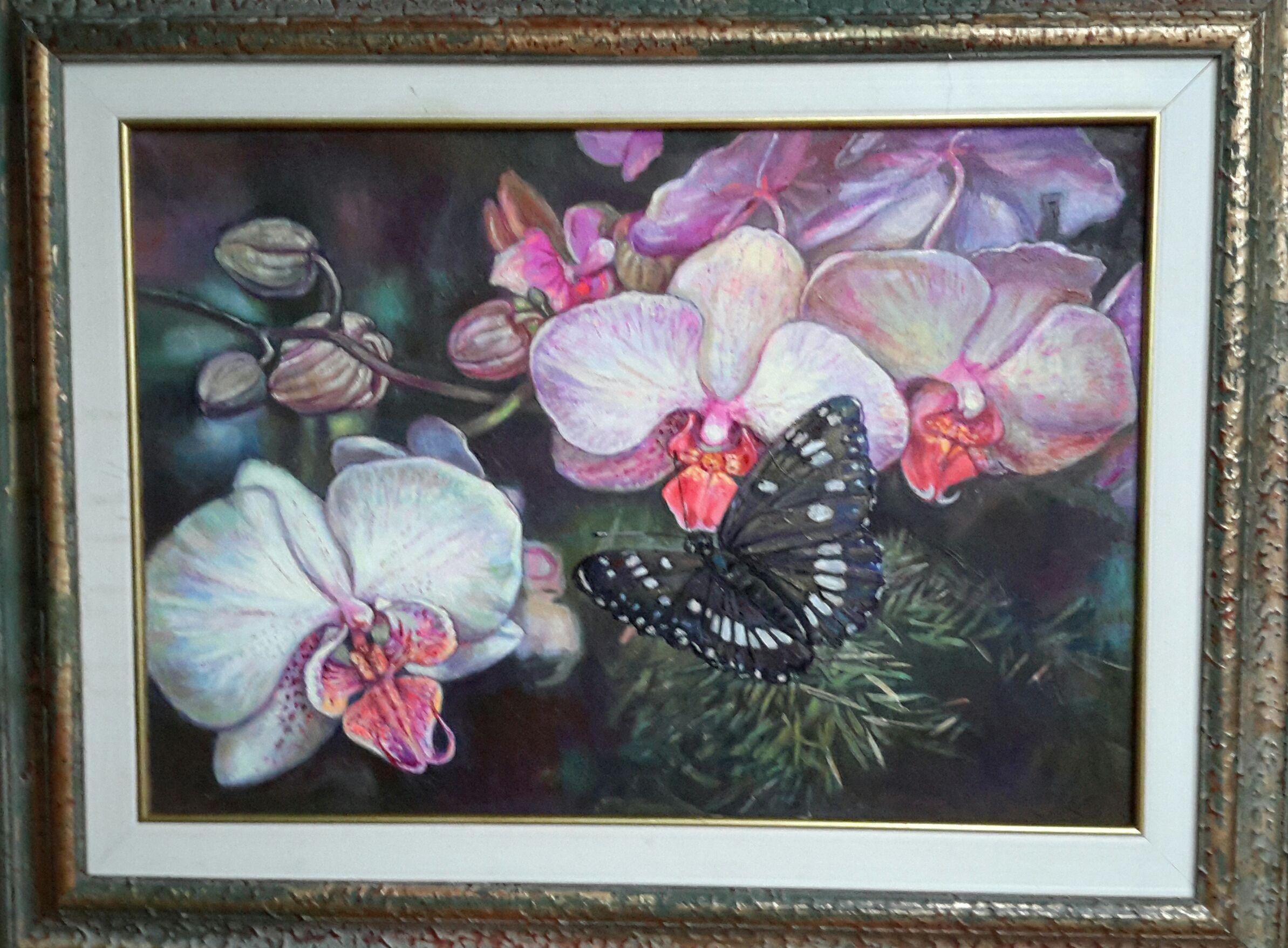 Orhideja ar melno taureni