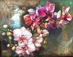 Orhideju zars