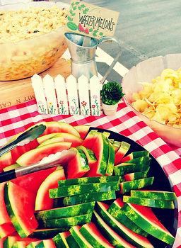 Corporate caterings, picnic, buffet
