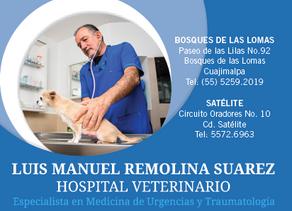 LUIS MANUEL REMOLINA, Especialista en medicina de urgencias y traumatología.
