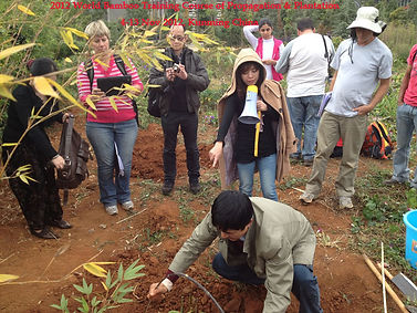 Bamboo workshop, Bamboo training