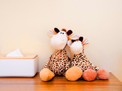 長頸鹿的家 (6)