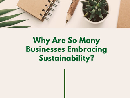 Why Are So Many Businesses Embracing Sustainability?