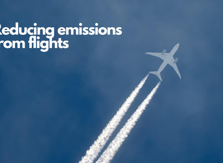 Reducing your emissions from flights