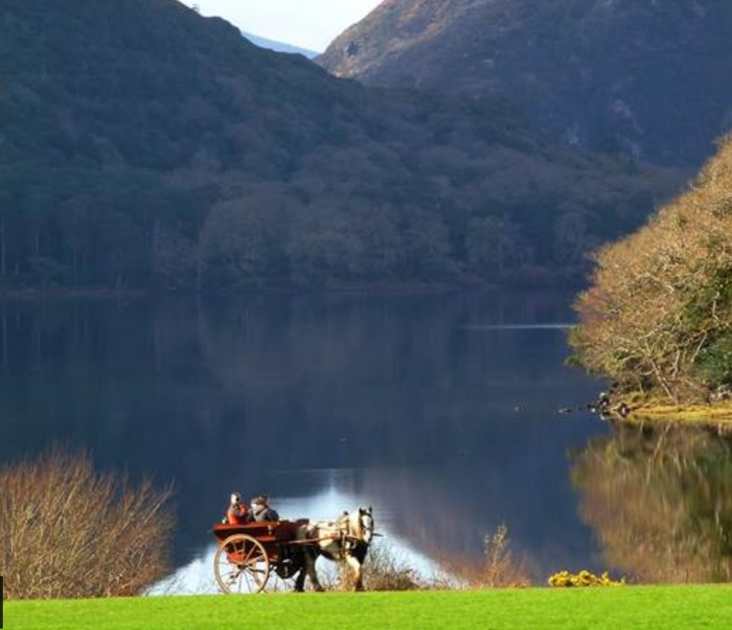 INCENTIVES HOSTING YOUR EVENT IN IRELAND