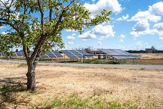 YH Solar PV and Ag 23.jpg