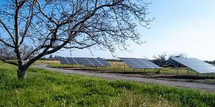 YH Solar PV and Ag 17.jpg