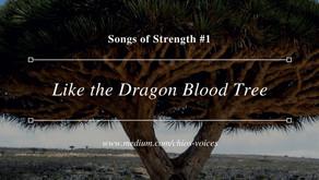 #1—Like the Dragon Blood Tree