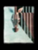 ROYAL TEAL BAMBOO TEAL IMG_6118.png