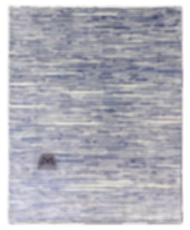BABY SEAL PNG.png