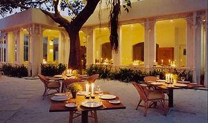 olive bar delhi.JPG
