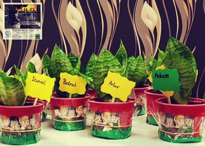 Roślinki, które Dzieci Wagonika zabrały ze sobą, by o nie dbać i pięlgnować.