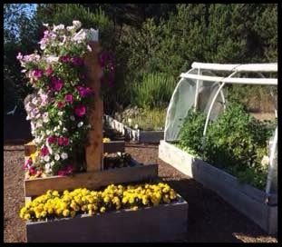 Lincoln City demonstration Garden