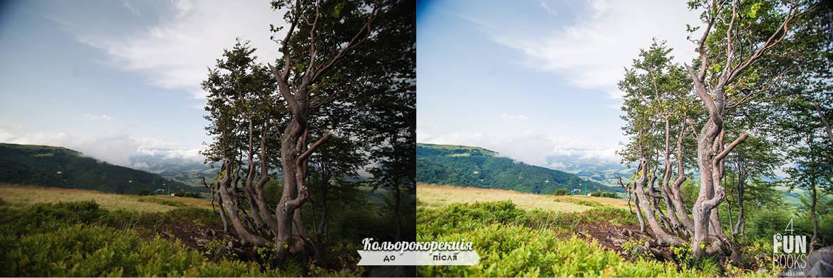 cc_compare47.jpg
