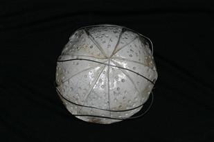 Shield of Shields #7