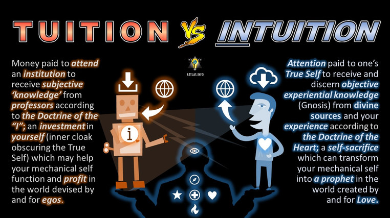 Intuition-vs-tuition.jpg