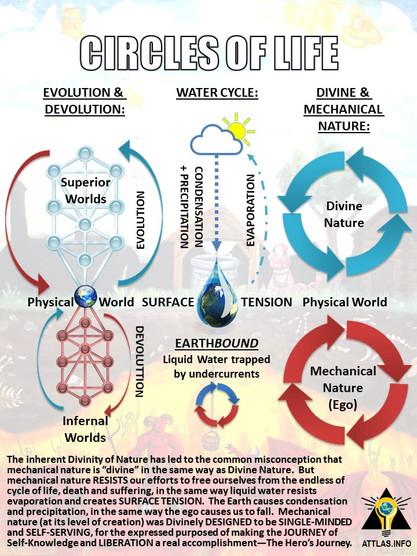 Circles-of-Life-Nature.jpg