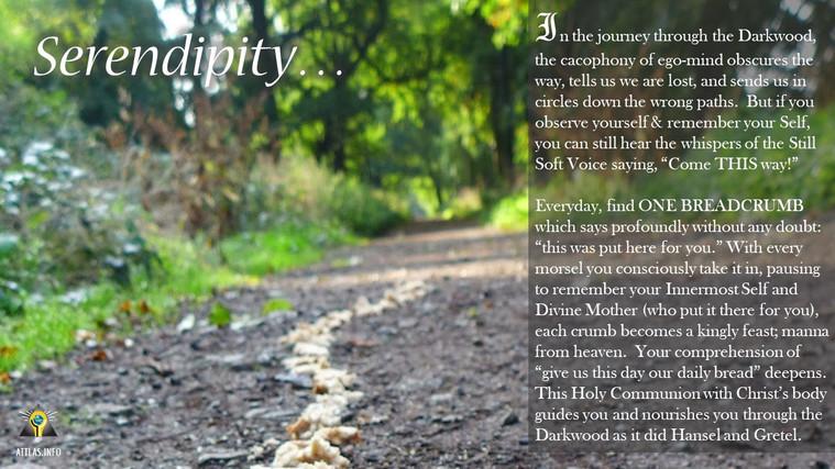 Serendipity-Breadcrumb-Trail.jpg