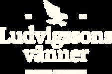 lv logo.png