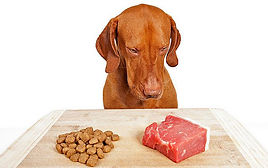 Raw-Dog-Food.jpg