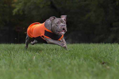 Dry Dog Fleece CALIFORNIA ORANGE