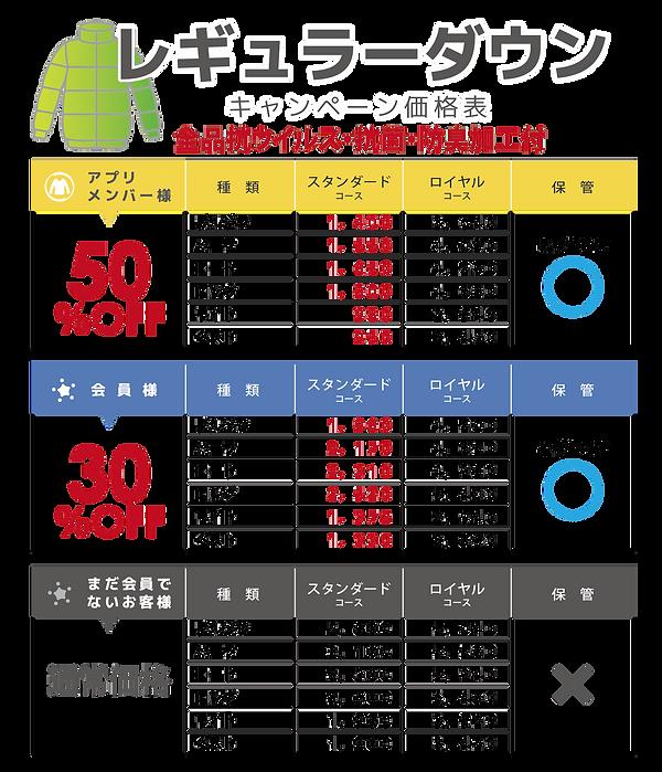 2021 ダウン レギュラー-min.png