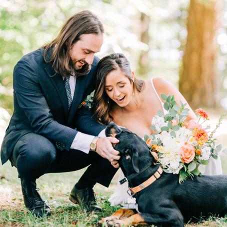 Jill & Henrys Intimate Backyard Wedding