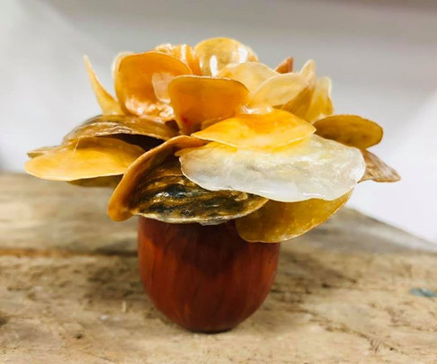 Jingle shell flower egg