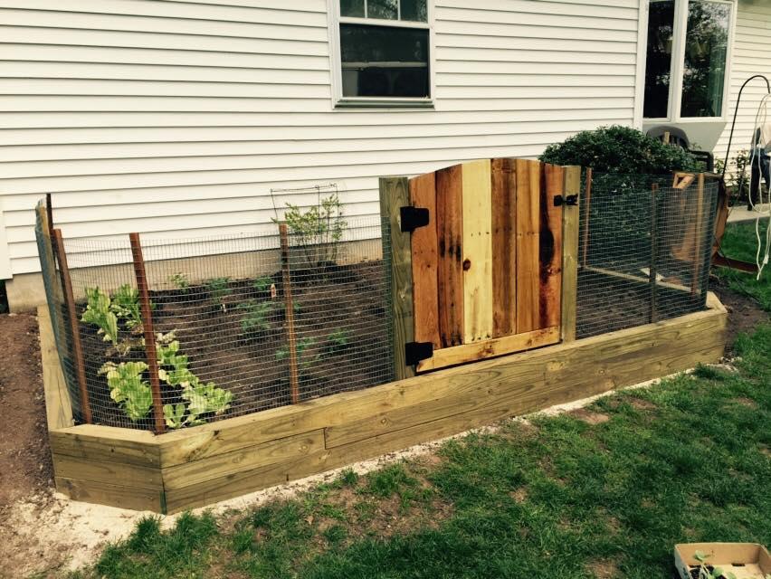 Box Garden Pallet Door