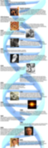 FINALEvolutionTimeline10-29.jpg