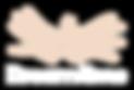 DT---White-logo.png