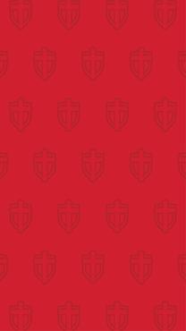 Sheild Background-InstaStory-04.png