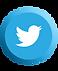 Social Media Icons-03.png