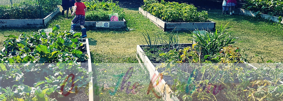 Field Trip: Community Garden
