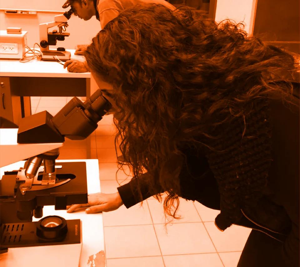 תלמידי רפואה של אוניברסיטה בעם, במעבדות רפואה באוניברסיטת תל-אביב, מסתכלים במיקרוסקופים