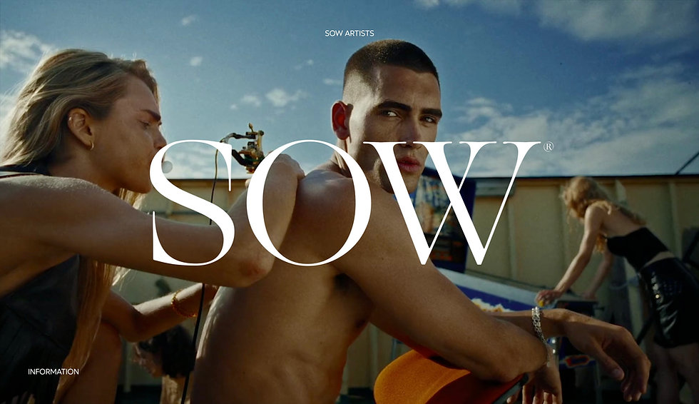 Website for SOW. Full screen image showing people together as a background. In the middle is the brand name in large white text. At the top of the image is smaller white text in white against the background.