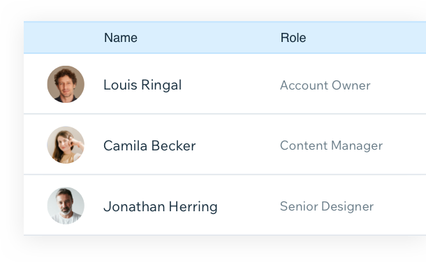 List of 3 site collaborators showing their avatar, name and role.