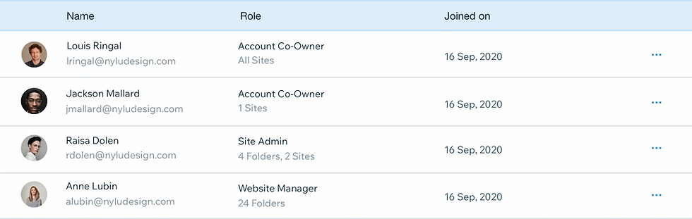 Image showing team management roles. There are 3 columns: name, role & joined on. Beneath each column is the information for 4 team members.