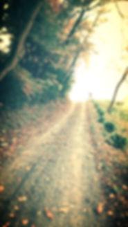 アビチュエからの小道