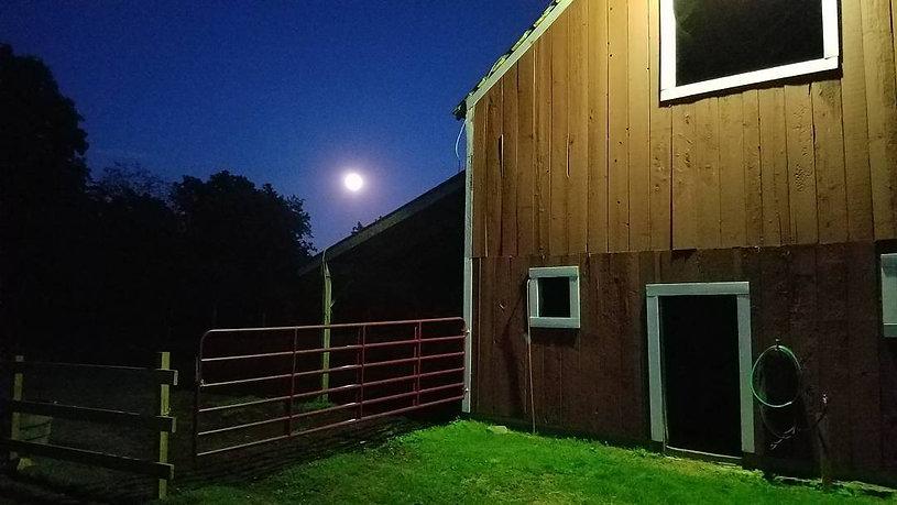 Moon Photos.jpg
