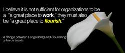 From Languishing to Flourishing