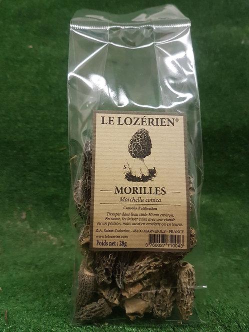 Morilles