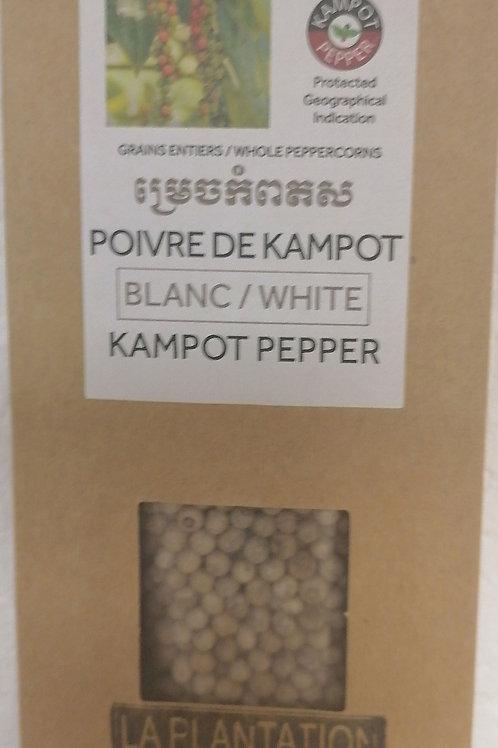 Poivre de KAMPOT blanc 50g