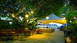 Hale Koa Hotel ~ 20x20 Peak Tent ~ Buffet Station
