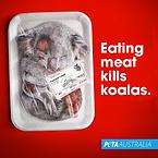 PETA-Koala-Fleischschale-600x600-2020-10