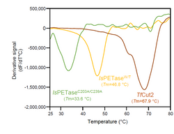 Thermal Shift