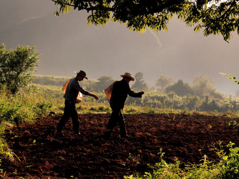 Vinales, Cuba - Escape to the Countryside