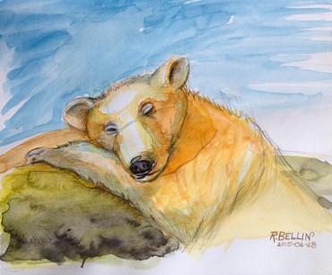 """""""Sleeping Bear"""""""